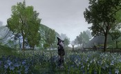 Lord of the Rings Online - Misty Morning