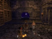 "Dungeons & Dragons Online - DDO: Paladin has found his destiny... ""Cooome to mee.. coome here..."" - whispers the voice."