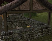 Lord of the Rings Online - Hanging with my girl.