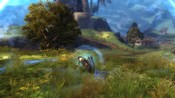 Guild Wars 2 - Hiding behind it!