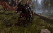 Neverwinter - Taking my horse for a ride in Blackdagger