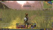 EverQuest II - Morning in EQ2..Gathering Coffee