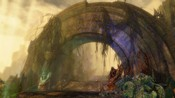 Guild Wars 2 - GW2 Max Sett. Amb Occl. ON!