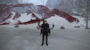 Final Fantasy XIV: A Realm Reborn - Dragoon and wyrm