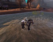 Warhammer Online: Age of Reckoning - My Horse walks on water