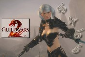 Guild Wars 2 - image 5456