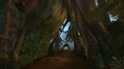 World of Warcraft - This is an angle of the log bridge in the Grizzly Hills of Northrend taken back just underneath a large tree with a path cut through it