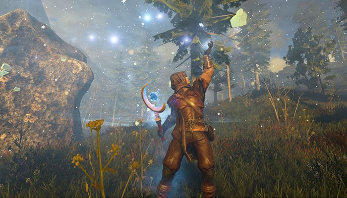 Five Things We Want from Snail's Dark & Light