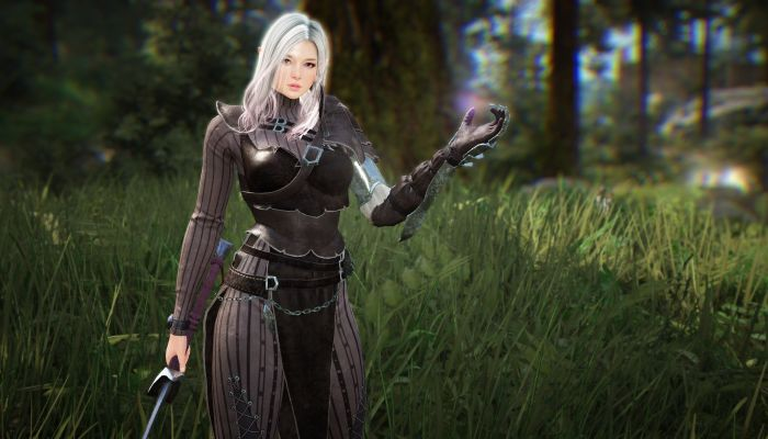 Black Desert Online The Dark Knight Rises Mmorpg Com
