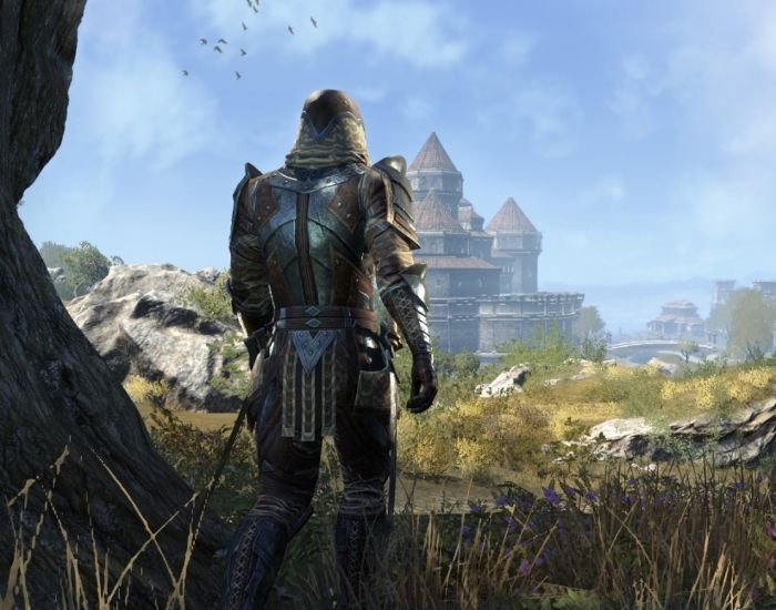 What Does Veteran Rank Removal Mean to Your Character? | Elder Scrolls Online | MMORPG.com