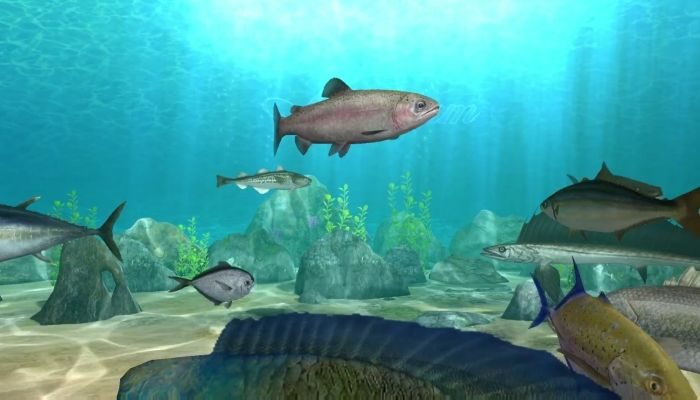 World of Fishing Arrives on Steam