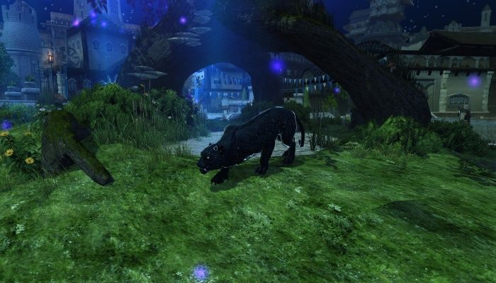 Celebration of Lliira Making a Return on June 29th - Neverwinter News
