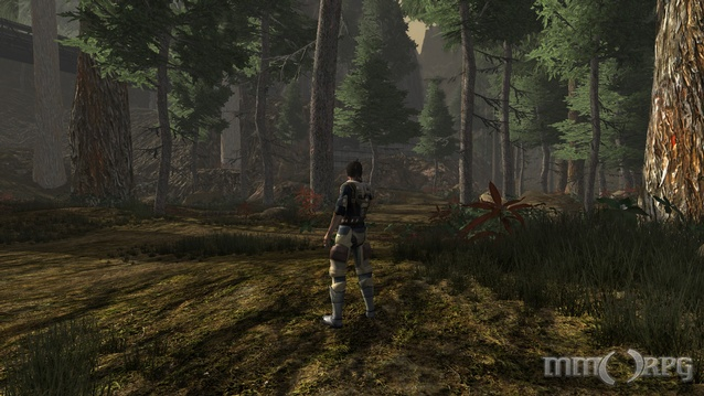 The Repopulation