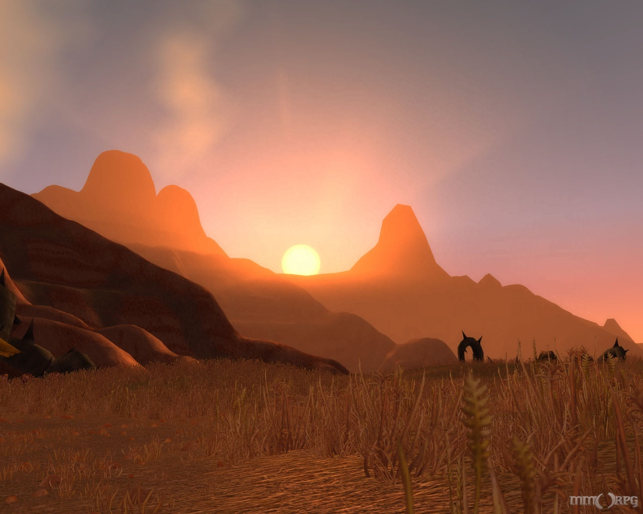 Barrens Sunset