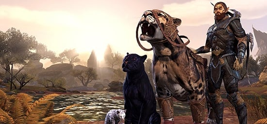 Pet Class, Where Art Thou? - MMORPG com