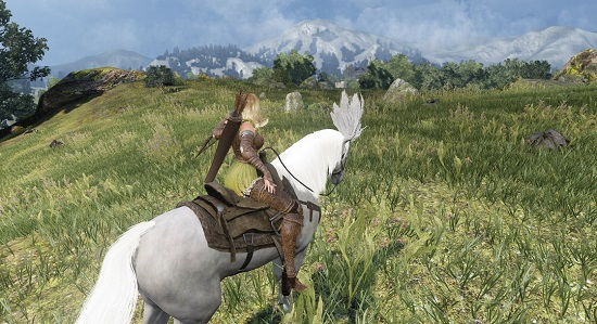 How to Tame a Horse in BDO - MMORPG com