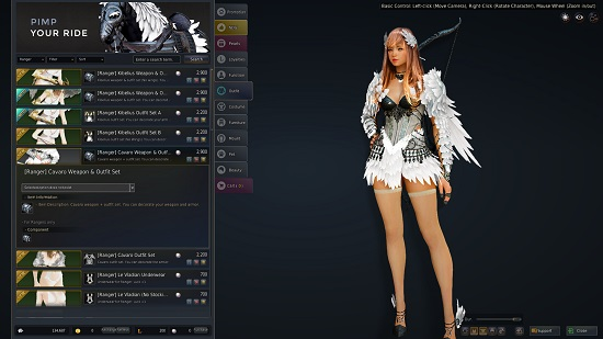 how to use character customisation bdo