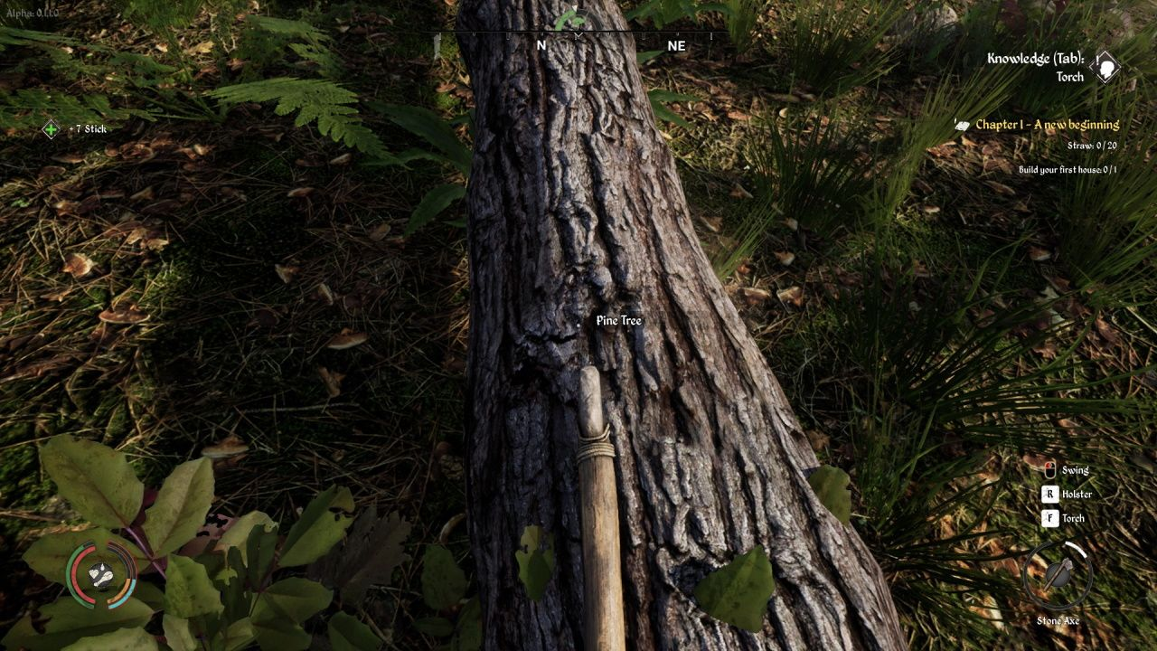 Medieval Dynasty Gathering Wood