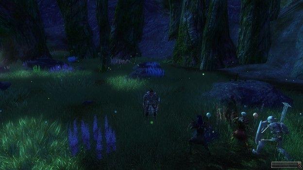 DDO forest
