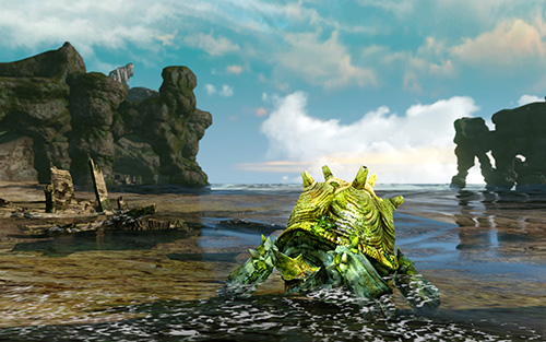 aa_turtle.jpg