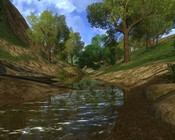 Lord of the Rings Online - Around The shire