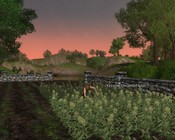 Lord of the Rings Online - Farming