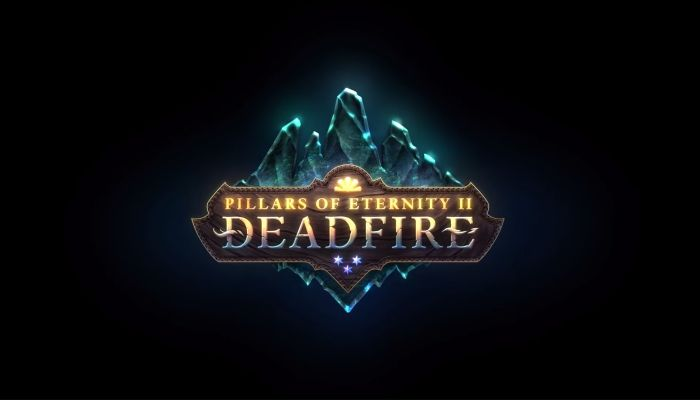 Pillars of Eternity 2 - What's New? We Chat with Bobby Null