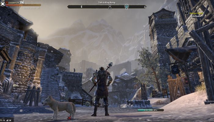 The Pressing Issues in ESO