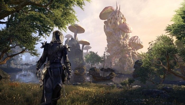 The Combat and the Content of ESO