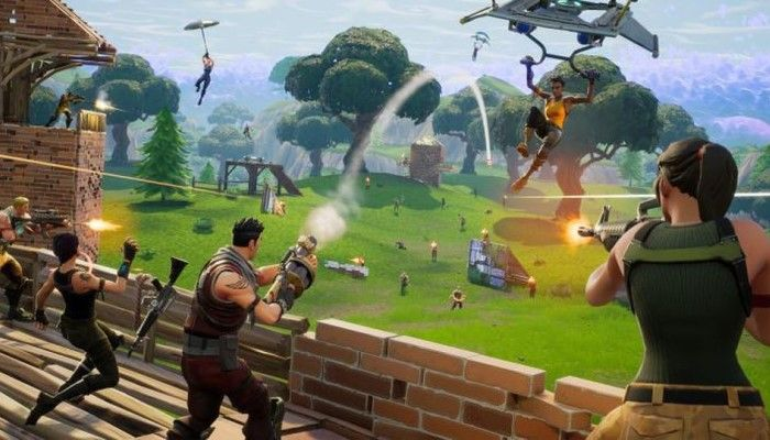 Will We See a Team Battle Royale Game?