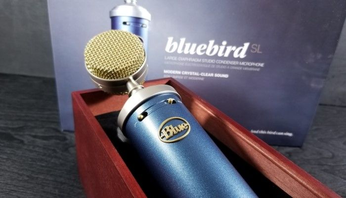 Blue Microphones Bluebird Condenser Mic: A Pro-Level Step-Up From the Yeti