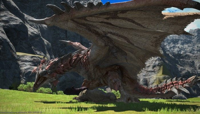 The Hunt for Rathalos is On
