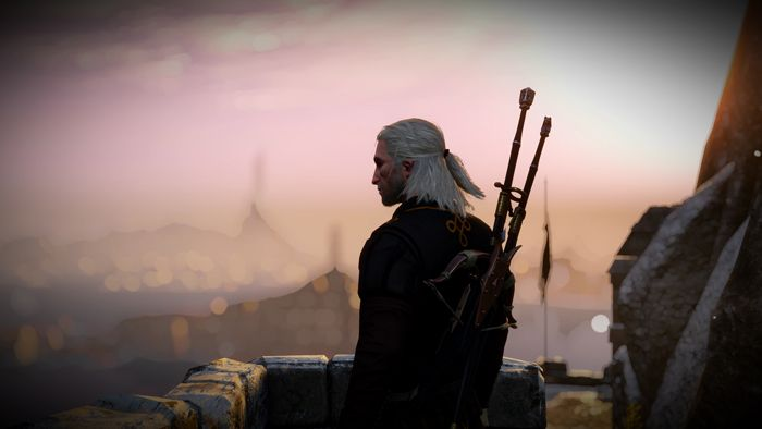 OPINION: My Take On A (Possible) Witcher MMO