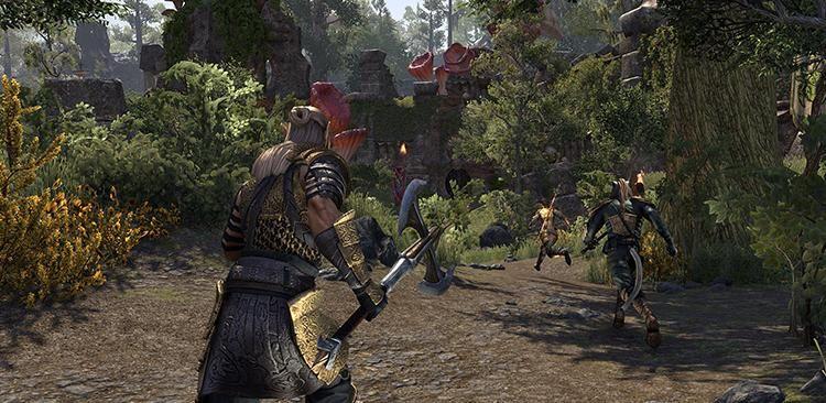 ESO Battleground Guide Published - MMORPG com