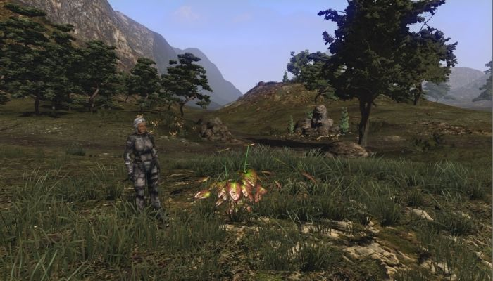 Latest Development Update Details Frustrations & Successes - The Repopulation News