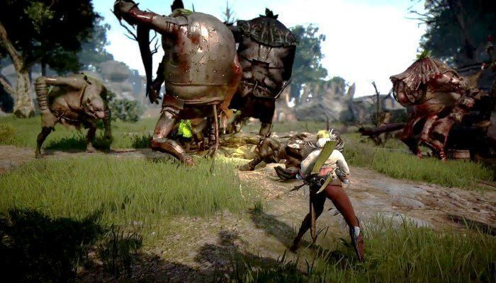 Community Frustration Growing Over Hacks / Cheats Without Repercussion - Black Desert Online News