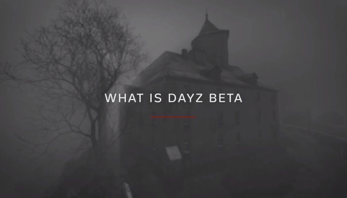Hey Guess What? After 5 Years in Alpha, DayZ is Finally in Beta Testing on PC - DayZ News