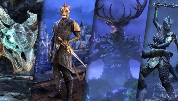 Elder Scrolls Online Producer Looks to 2019 & ESO's 'Truly