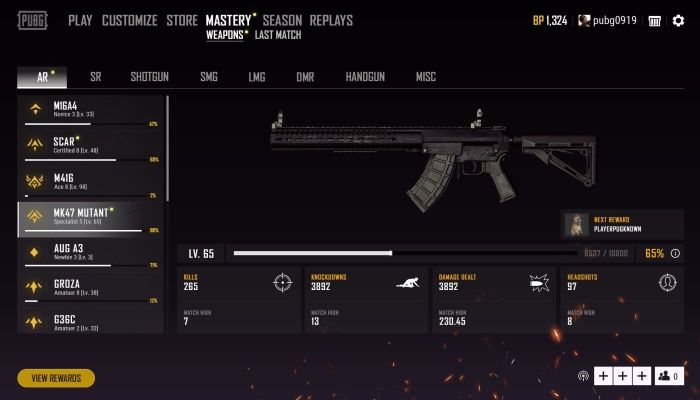 PlayerUnknown's Battlegrounds Test Server Update Brings Weapon Mastery to Players