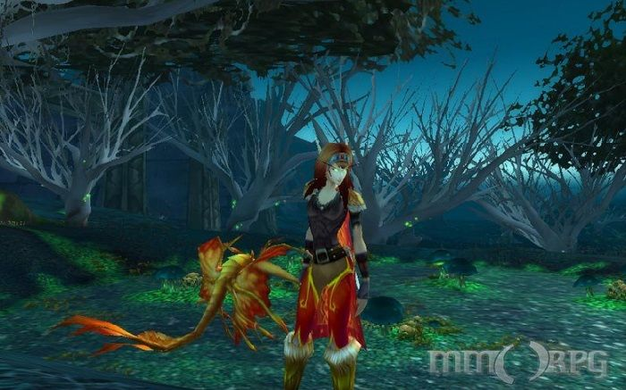 World of Warcraft Survey Asks About Classic Burning Crusade Character Creation