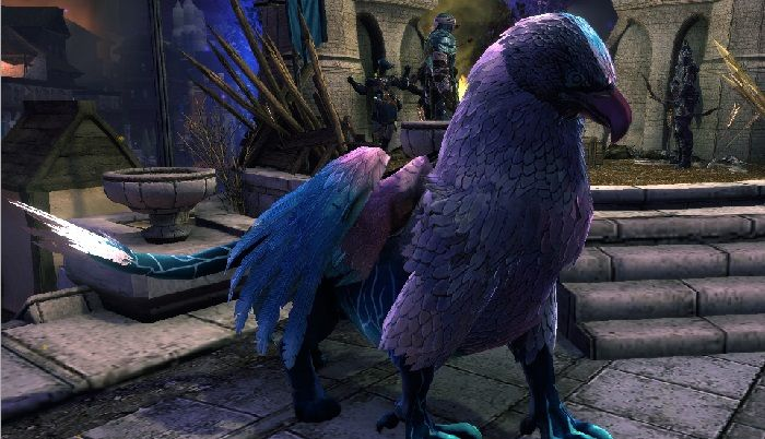 The Siege of Neverwinter Begins August 13